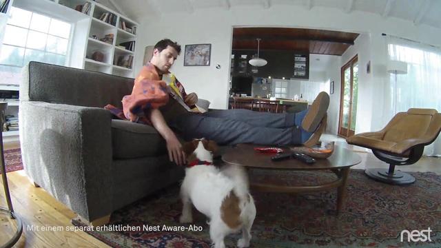 Nest-App-German-h264-final-090117.mp4 Video 10