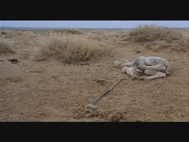 Die Geschichte vom weinenden Kamel (OmU) Video 2